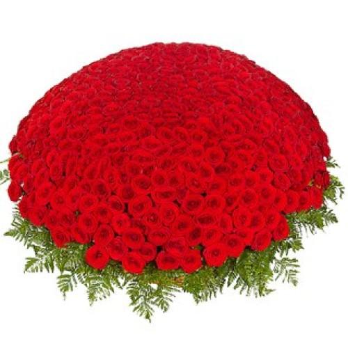 Купить на заказ 301  роза с доставкой в Каратау